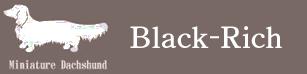 ブラックリッチケンネル 広島のブリーダー ミニチュアダックスフンド